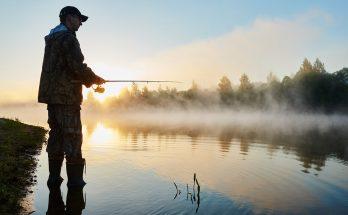 ماهیگیری با کمک درخت ۱