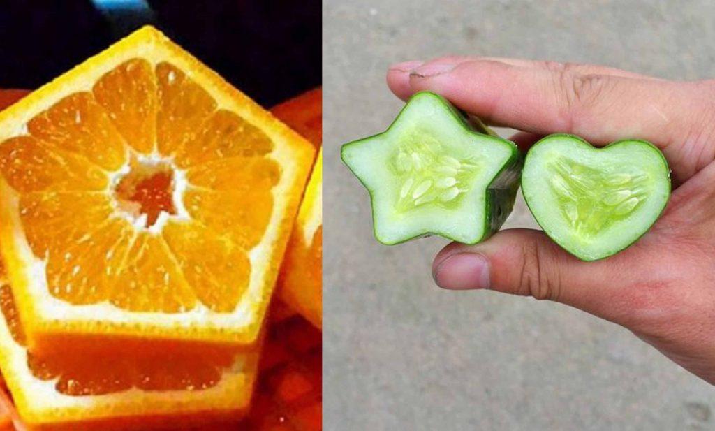 میوه شکل دار