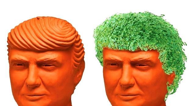 سبزه ترامپی